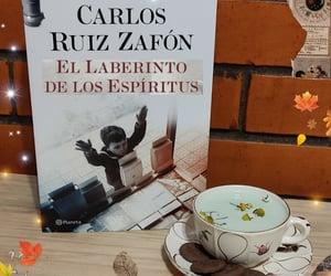bookshelf, carlos ruiz zafon, and reseña image
