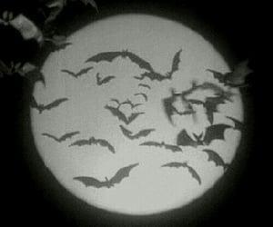 moon, dark, and black image