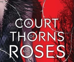 author, acotar, and beauty and the beast image
