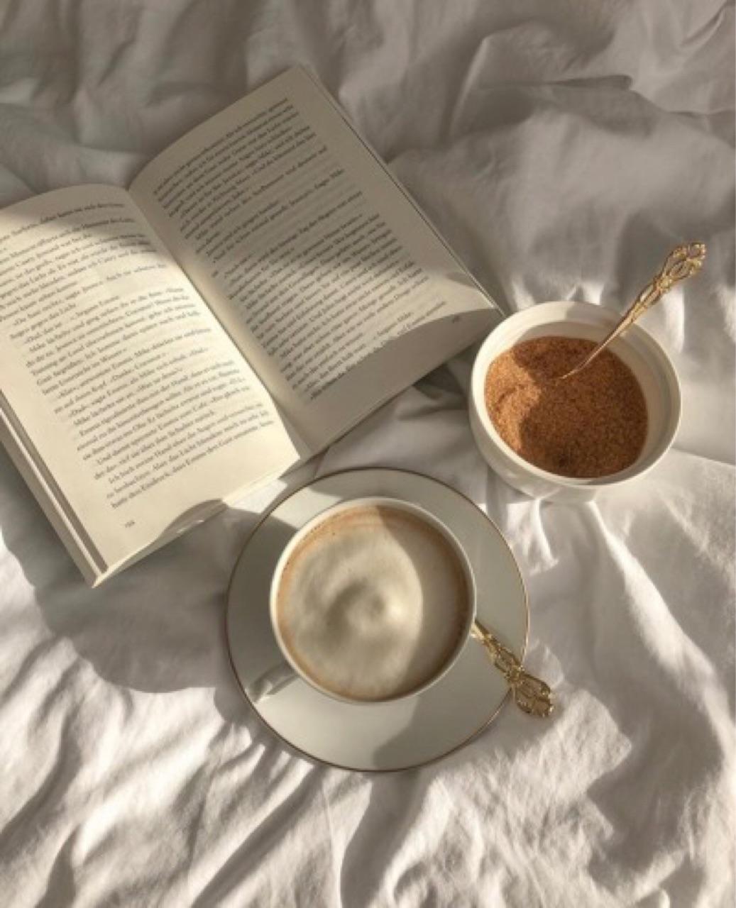bella swan, book, and literature image