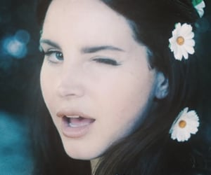 icon, aesthetic, and lana image