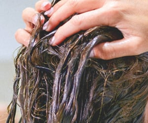 hair care and hair conditioner image