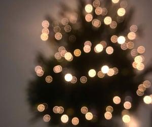 christmas, christmas tree, and green image