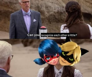 Chat Noir, funny, and ladybug image