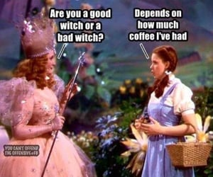 coffee, witch, and Wizard of oz image