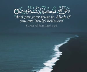 islam, quran, and ummah image