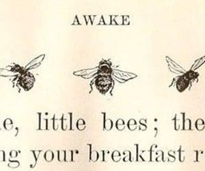 bee, awake, and text image