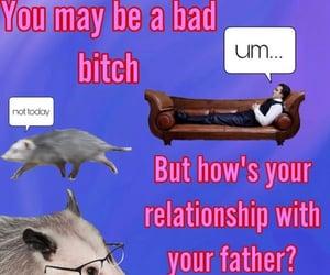memes, possum, and resolution image