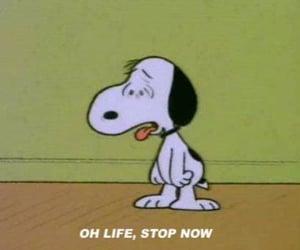 snoopy, life, and cartoon image
