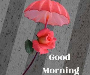 good morning, rainy days, and sweet morning image