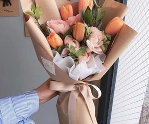 flores, tulipanes, and tulips image