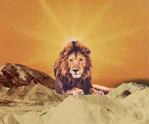 aesthetic, lion, and yellow image