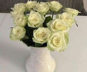 blumen, roses, and white image