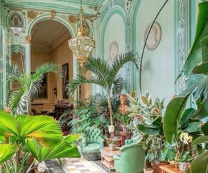 conservatory, france, and palms image