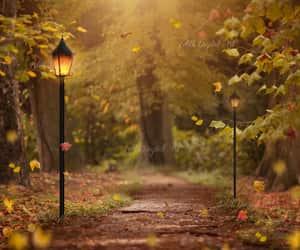 autumn, dreamy, and enchanted image