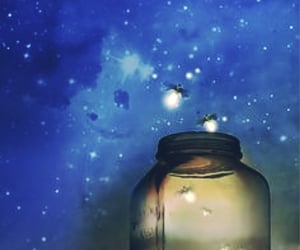 art, firefly, and summer night image