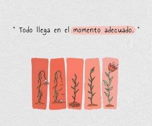tiempo and frases en español image