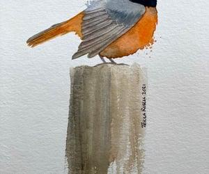 art, watercolor, and bird image