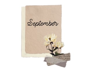 flowers, September, and month image