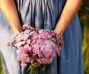 beauty, bouquet, and country image