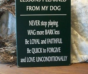 dog, loyalty, and family image