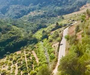 arboles, montaña, and nature image