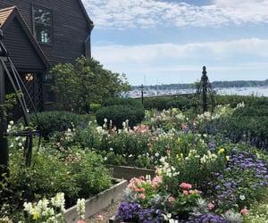 garden and cottagecore image