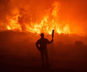 firefighter, orange, and fires image