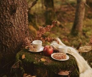afternoon tea, tea time, and autumn tea image