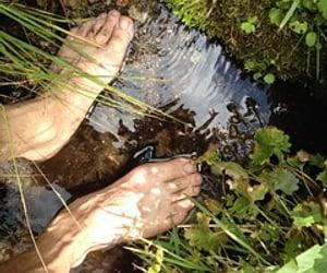 barefoot, mountain, and yosemite image
