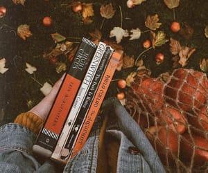 590 Fall ideas | autumn aesthetic, autumn inspiration, fall
