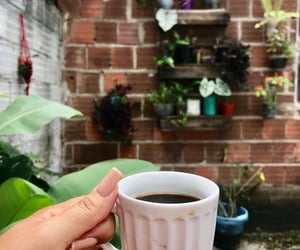coffee, morning, and cofre image