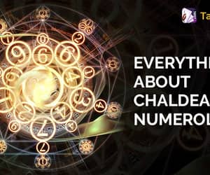 destiny number, life path number, and numerology number image