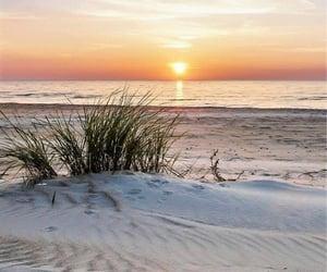 beach, naturaleza, and paisajes image