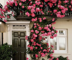 flowers, tumblr, and house image