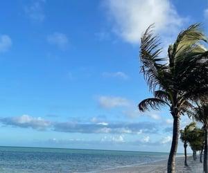 beach, beautiful, and landscape image