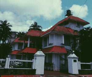 architecture, guesthouse, and coconut tree image