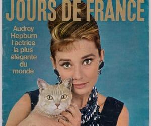1960s, audrey hepburn, and cat image