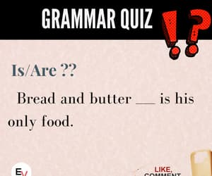 quiz, english learning app, and english practice app image