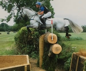 country, equine, and jump image