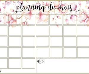 flowers, planner, and rose image