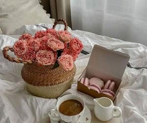 aesthetic, coffee break, and macaroni image