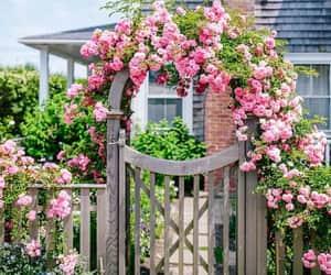 exteriores, fotografía, and flores image