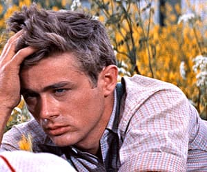 east of eden, gif, and james dean image