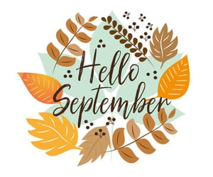 autumn, new month, and fall image