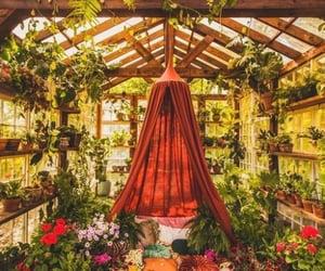 boho, greenhouse, and pillows image