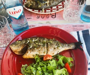 fish, photo, and portugal image