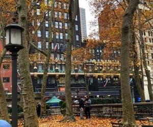 aesthetics, autumn, and city image