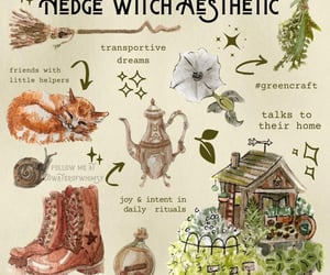 hedge, witch, and witch aesthetic image