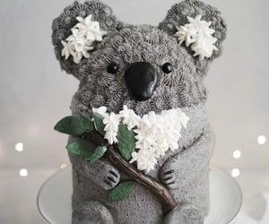 bear, food, and Koala image